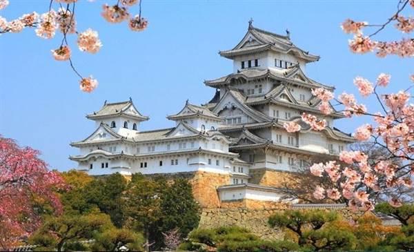 Nhật Bản nổi tiếng với Hoa Anh Đào